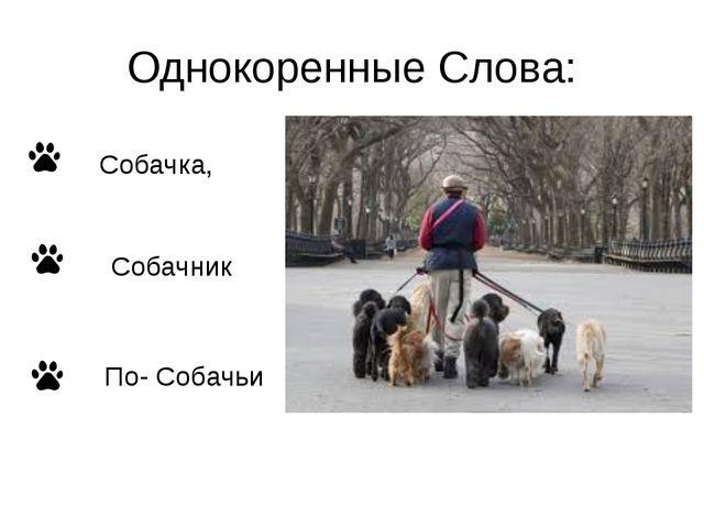 Однокоренные Слова: Собачка, Собачник По- Собачьи