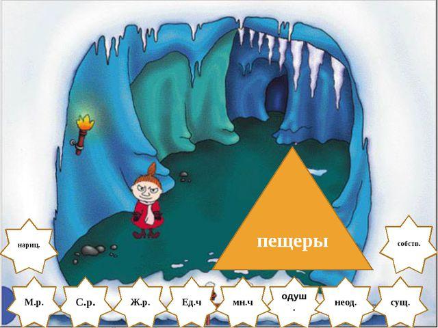 С.р. одуш. М.р. Ед.ч пещеры Ж.р. неод. мн.ч сущ. нариц. собств.