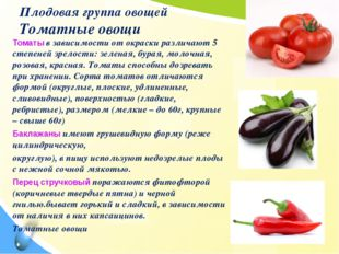Плодовая группа овощей Томатные овощи Томаты в зависимости от окраски различа