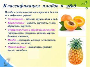Классификация плодов и ягод Плоды в зависимости от строения делят на следующи