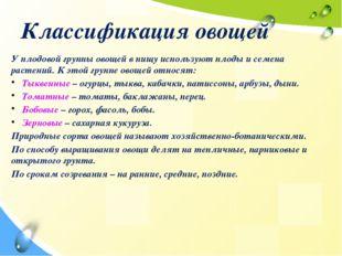 Классификация овощей У плодовой группы овощей в пищу используют плоды и семен