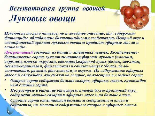Вегетативная группа овощей Луковые овощи Имеют не только пищевое, но и лечебн...