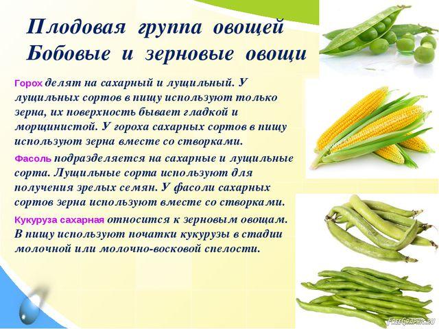 Плодовая группа овощей Бобовые и зерновые овощи Горох делят на сахарный и лущ...