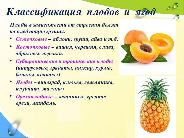 Классификация плодов и ягод Плоды в зависимости от строения делят на следующи...