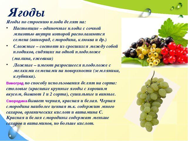 Ягоды Ягоды по строению плода делят на: Настоящие – одиночные плоды с сочной...