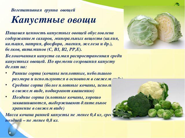 Вегетативная группа овощей Капустные овощи Пищевая ценность капустных овощей...