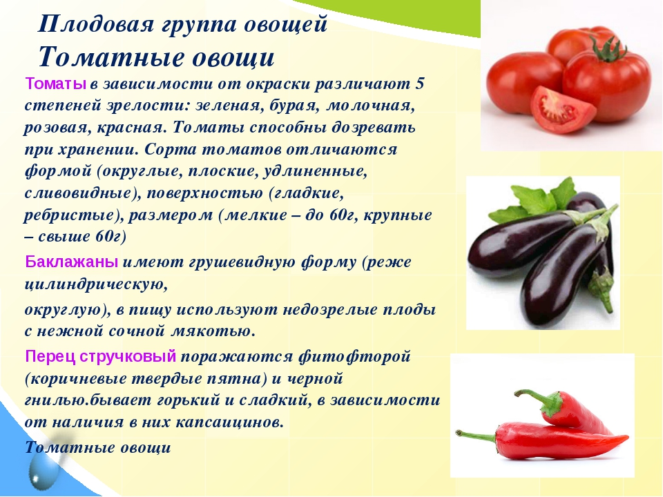 Плодовая группа овощей Томатные овощи Томаты в зависимости от окраски различа...