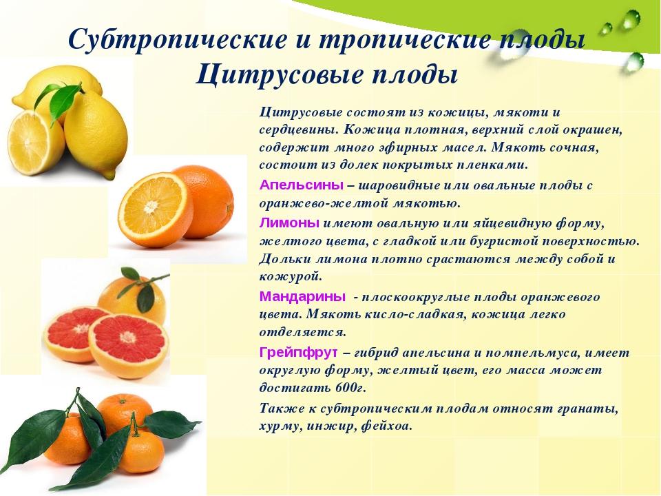 Субтропические и тропические плоды Цитрусовые плоды Цитрусовые состоят из кож...
