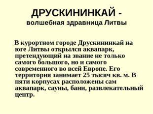 ДРУСКИНИНКАЙ - волшебная здравница Литвы В курортном городе Друскининкай на