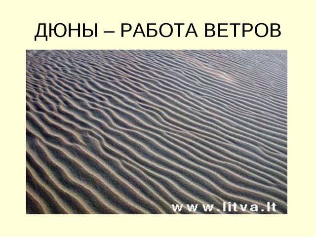 ДЮНЫ – РАБОТА ВЕТРОВ
