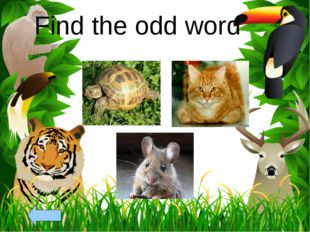 Find the odd word