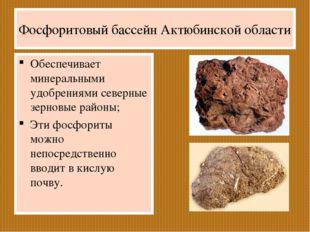 Фосфоритовый бассейн Актюбинской области Обеспечивает минеральными удобрениям