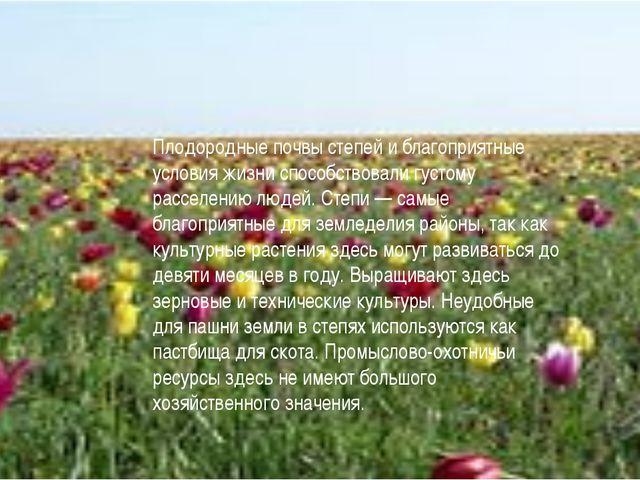 Плодородные почвы степей и благоприятные условия жизни способствовали густому...