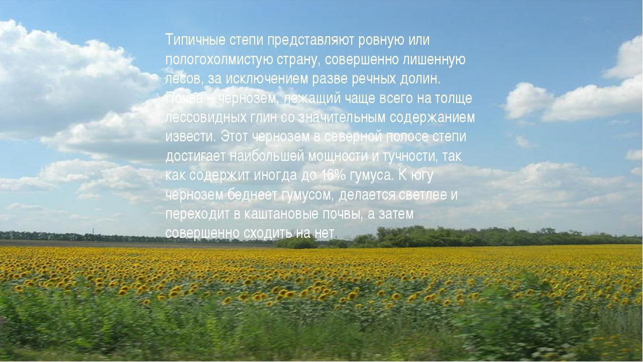 Типичные степи представляют ровную или пологохолмистую страну, совершенно лиш...
