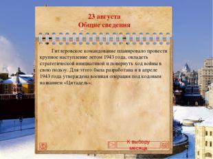 1 декабря Палаш командующего турецкой эскадрой Осман-паши, который он отдал п