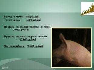 Расход за месяц – 800рублей Расход за год - 9.600 рублей Продажа годовалой св
