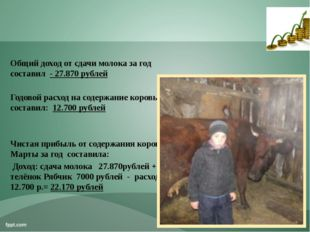 Общий доход от сдачи молока за год составил - 27.870 рублей Годовой расход на
