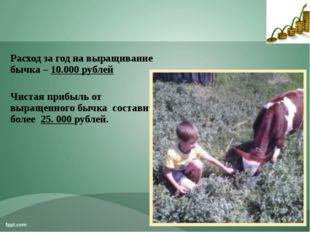 Расход за год на выращивание бычка – 10.000 рублей Чистая прибыль от выращенн