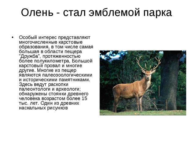 Олень - стал эмблемой парка Особый интерес представляют многочисленные карсто...
