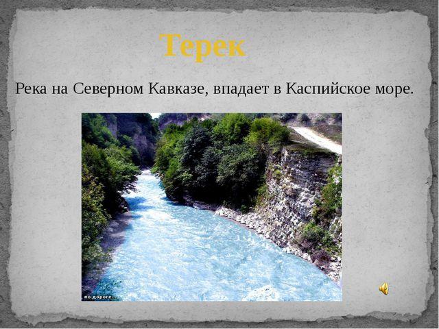 Терек Река на Северном Кавказе, впадает в Каспийское море.
