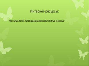 Интернет-ресурсы: http://www.florets.ru/fotogalereya/dekorativnolistnye-raste