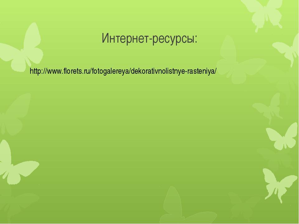 Интернет-ресурсы: http://www.florets.ru/fotogalereya/dekorativnolistnye-raste...
