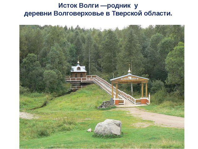 Исток Волги—родник у деревниВолговерховьевТверской области.