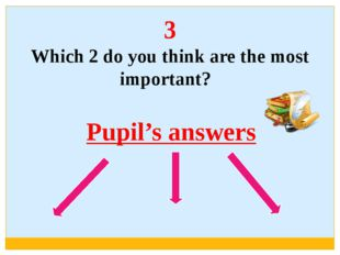 3 Which 2 do you think are the most important? Pupil's answers