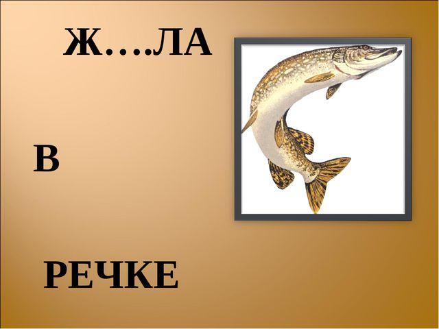Ж….ЛА В РЕЧКЕ