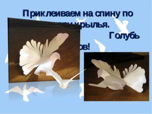 Приклеиваем на спину по центру крылья. Голубь готов!