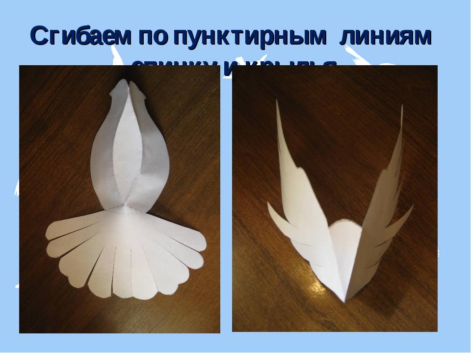 Сгибаем по пунктирным линиям спинку и крылья