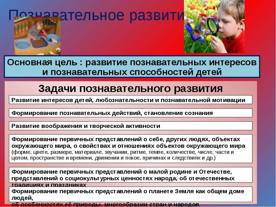 Познавательное развитие Основная цель : развитие познавательных интересов и п...