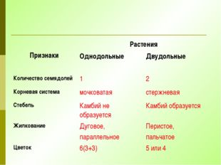 Признаки Растения Однодольные Двудольные Количество семядолей 1 2 Корневая с