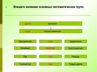 Впишите название основных систематических групп. царство растения отдел покры