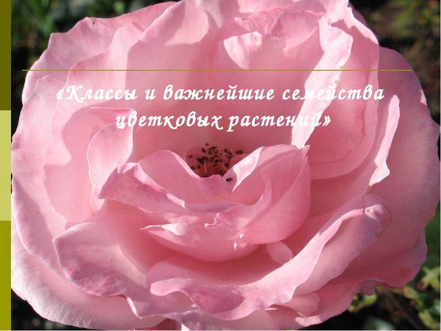 «Классы и важнейшие семейства цветковых растений»