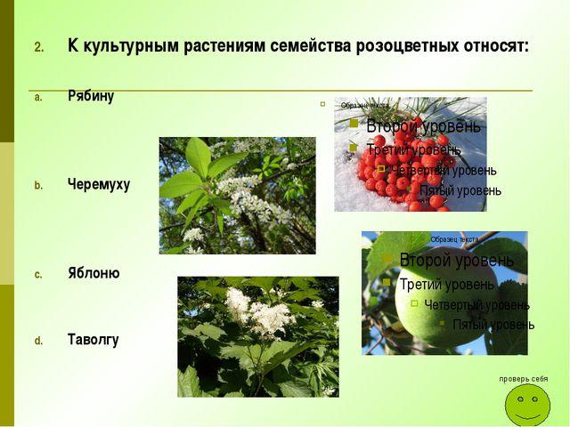 К культурным растениям семейства розоцветных относят: Рябину Черемуху Яблоню...