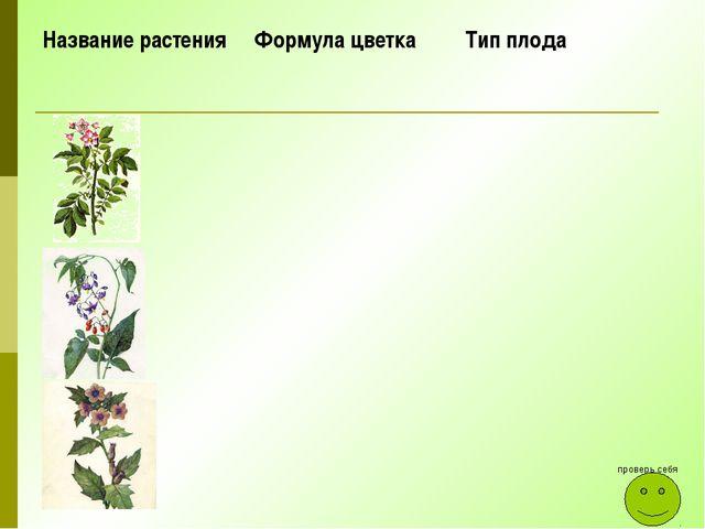 проверь себя Название растения Формула цветка Тип плода