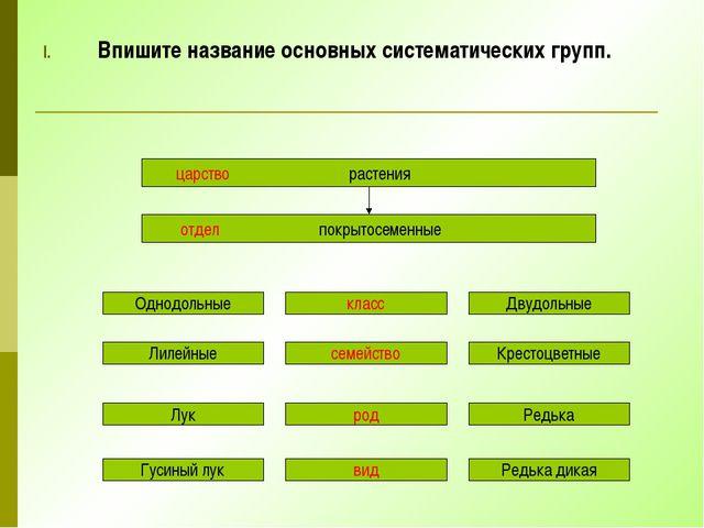 Впишите название основных систематических групп. царство растения отдел покры...
