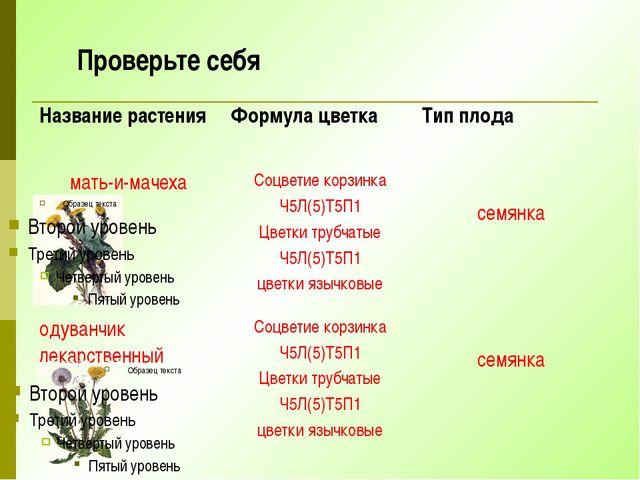 Проверьте себя Название растения Формула цветка Тип плода мать-и-мачеха Соцве...
