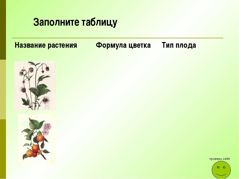 проверь себя Заполните таблицу Название растения Формула цветка Тип плода