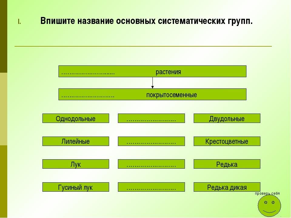 Впишите название основных систематических групп. …………………....... растения …………...