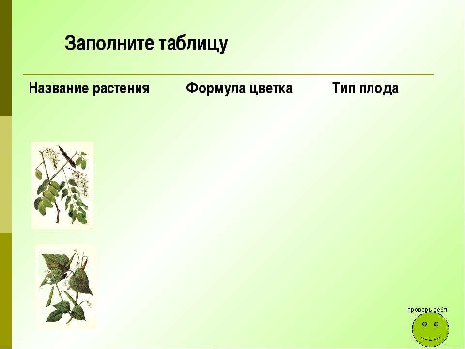 Заполните таблицу проверь себя Название растения Формула цветка Тип плода
