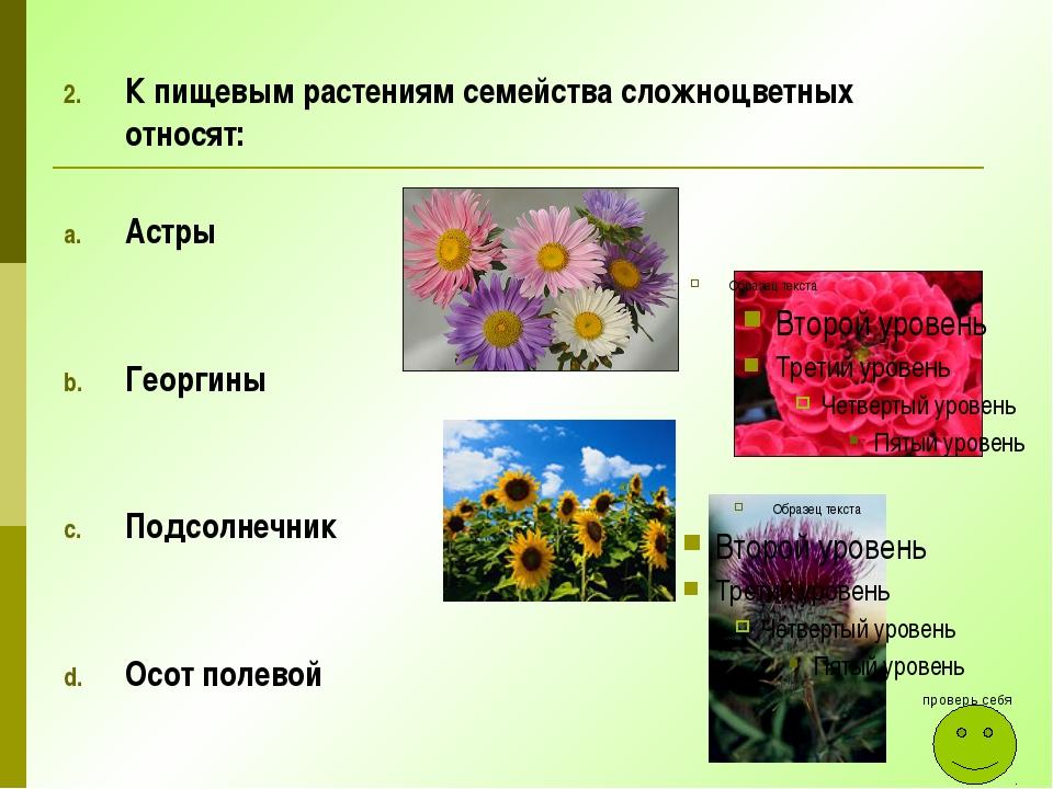 К пищевым растениям семейства сложноцветных относят: Астры Георгины Подсолнеч...