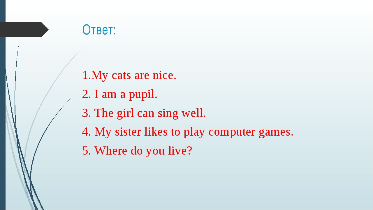 Ответ: 1.My cats are nice. 2. I am a pupil. 3. The girl can sing well. 4. My...