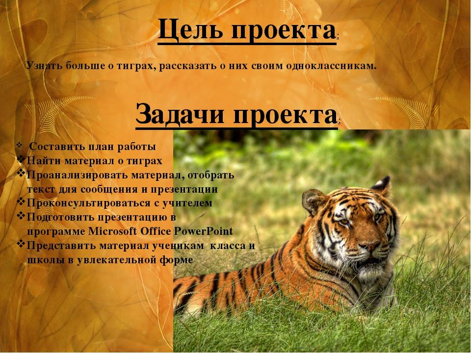 Узнать больше о тиграх, рассказать о них своим одноклассникам. Цель проек...