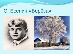 С. Есенин «Берёза»