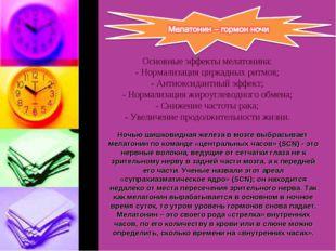 Основные эффекты мелатонина: - Нормализация циркадных ритмов; - Антиоксидант