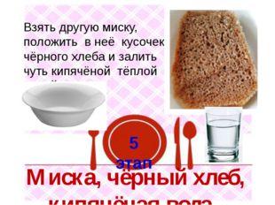 5 этап Взять другую миску, положить в неё кусочек чёрного хлеба и залить чуть