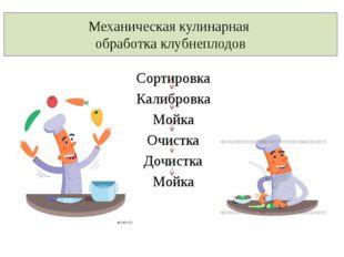 Механическая кулинарная обработка клубнеплодов Сортировка Калибровка Мойка Оч