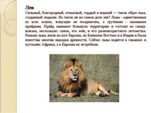 Лев Сильный, благородный, отважный, гордый и верный — таков образ льва, созд
